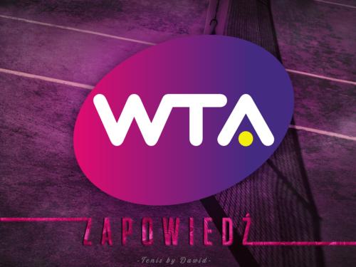 Zapowiedź finału kobiet Australian Open 2019 (by Żabka)